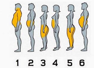 Dis-moi où tu prends du poids, je te dirai pourquoi